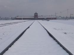 Vue générale de l'entrée d'Auschwitz II