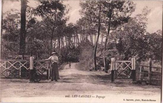 PN forestier