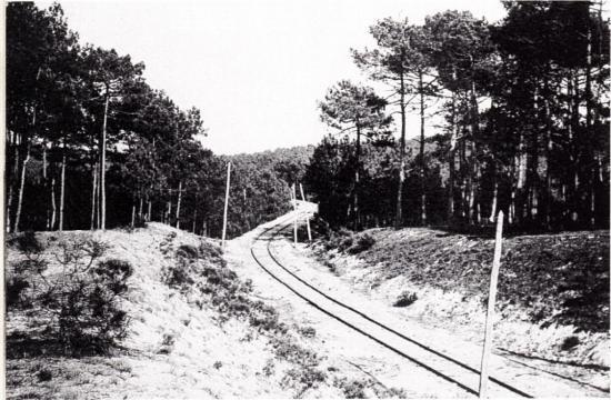 Ligne dunes_1