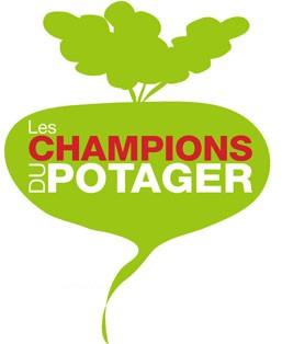 les champions du potager