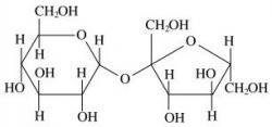 molécule de saccharose