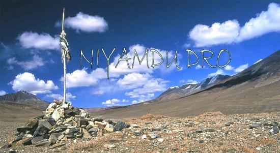 Page d'accueil Niyamdu Dro