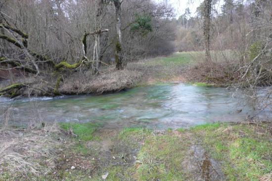 La  rivière de la deuille de Crézilles a effacé le chemin !