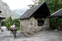 Photo balade d'ânes