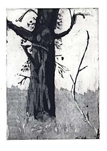 viiel arbre