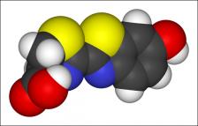 Représentation tridimensionnelle de la luciférine