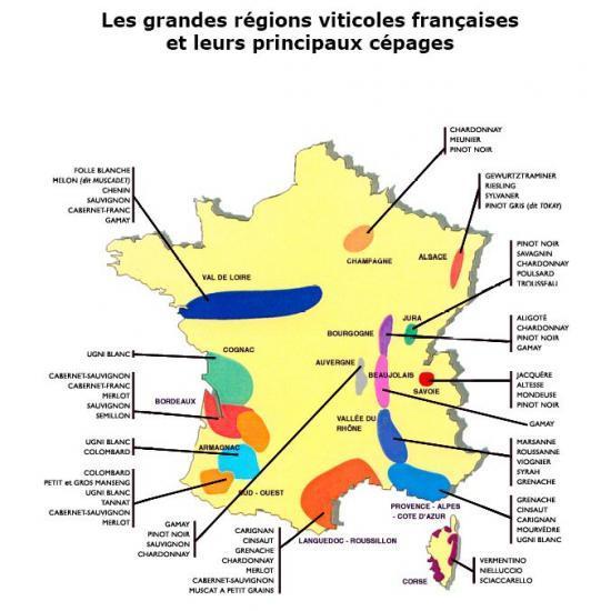 Travaux Vigne Calendrier.La Culture De La Vigne