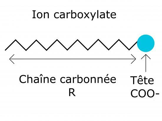 ion-carboxylate