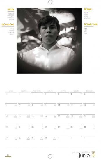 Calendrier linguistique maya 2011