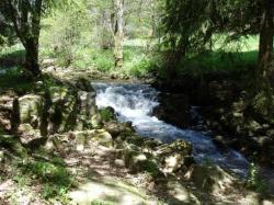 petite cascade en sous bois