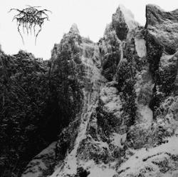 Darkthrone - Total Death 2011