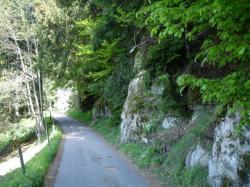 la petite route qui conduit à la Papeterie