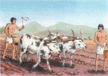 Agriculteur de l'égypte antique