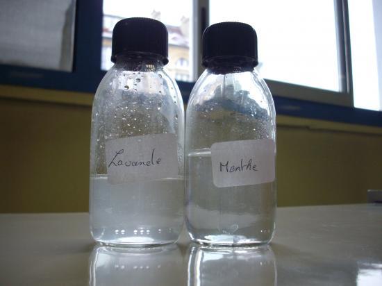 I premi re partie pr sentation des huiles essentielles et de la sinusite - Sinusite huile essentielle ravintsara ...