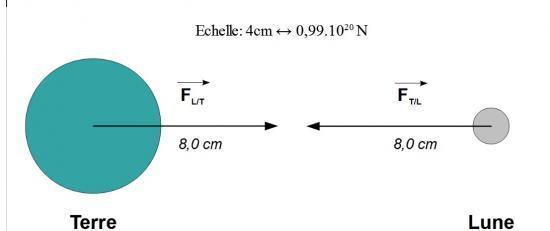 Schéma de la force gravitationnelle s'exerçant entre la Terre et la Lune