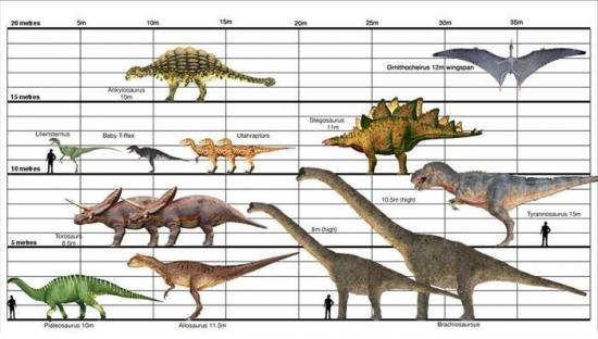 Histoire des dinosaures - Liste des dinosaures carnivores ...