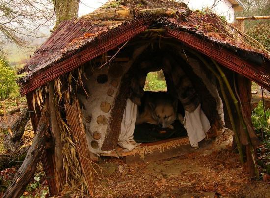 cabane colo chauffante pour l 39 hivers pour chats ou chien. Black Bedroom Furniture Sets. Home Design Ideas