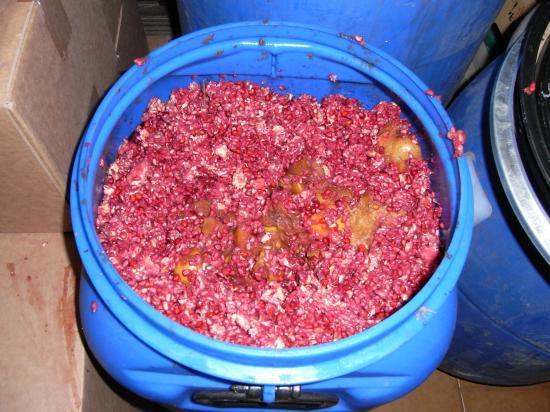 le mélange doux et acidulé pommes-grenades