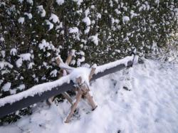 mat sous la neige