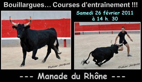 Manade du Rhône samedi 26 février 2011