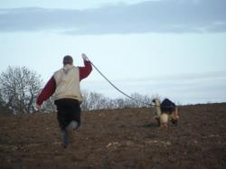 Pistage bucy 2011 (2)