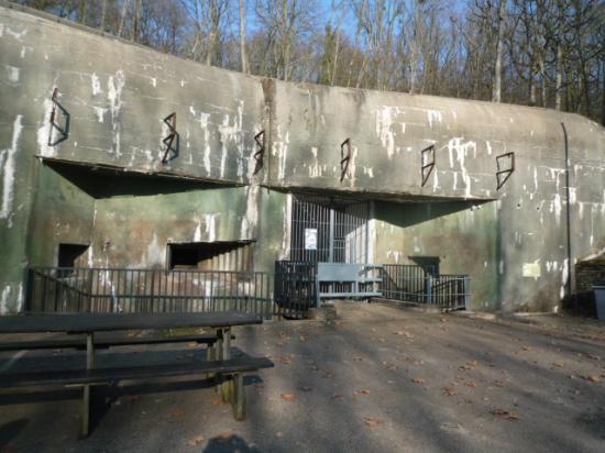 Vue d'ensemble du fort