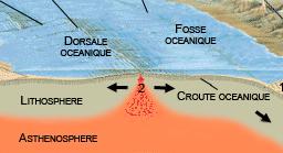que produit la rencontre de deux portions de croute oceanique