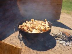 Pollo al disco con cidra - Mendoza
