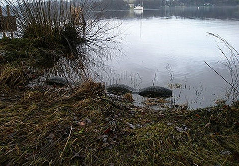 Cryptozoologie cryptozoology 07 mars 2011 Tom Pickles Sarah Harrington Bowness-on-Windermere lac lake england angleterre wake vague analyse fausse bateau créature inconnue monstre Bownessie ship photographie célèbre cryptide lacustre