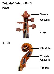 Tete du violon, Volute, cheville, sillet, chevillier, trou de cheville, touche du violon