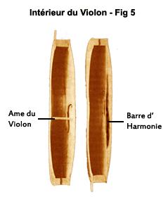 Interieur du violon, radiographie du violon, ame du violon, barre d'harmonie