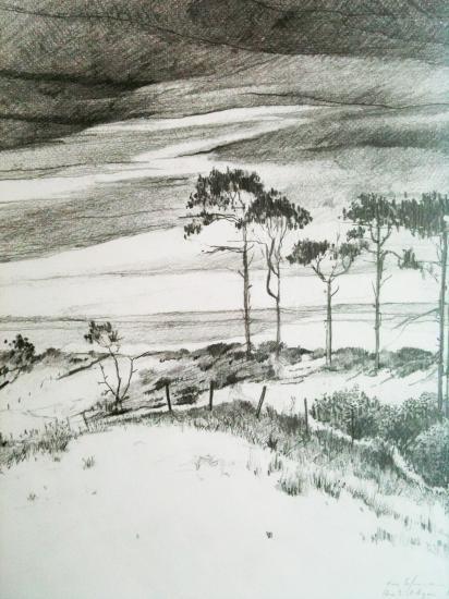 Les pins. Pointe d'Agon. Crayon 2B. 2001.