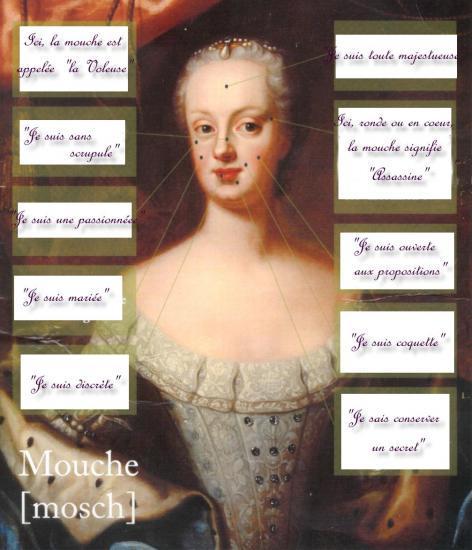 http://s3.e-monsite.com/2011/03/15/08/resize_550_550//mouche.jpg